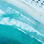 Riding the waves in digital marketing